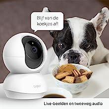 pets monitoring
