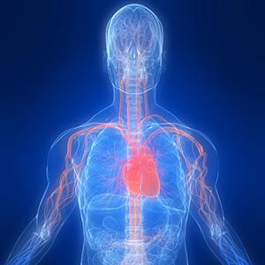 Vitamin D3 1000 IU immune heart bone teeth health immune system