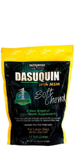 Dasuquin with MSM Soft Chews Joint Health Supplements for Dogs