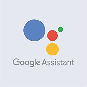 Google Assistant compatibility
