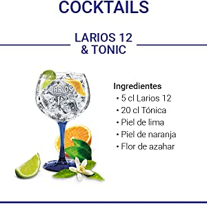 Larios 12 Ginebra Mediterránea, 40% - 700 ml: Amazon.es ...