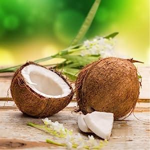 kokosöl, kokosnussöl, sorion, repair creme, salbe, hautpflege, schuppenflechte, neurodermitis