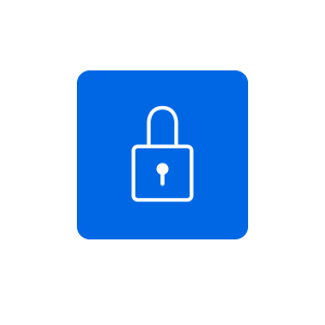 Privacy icon