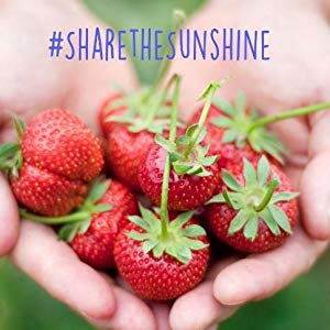 strawberries,fresh fruit,dole,f
