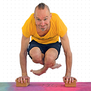 El Mono Yogui. El Diario De La Práctica: 16,5 x 23,5 cm Yoga ...