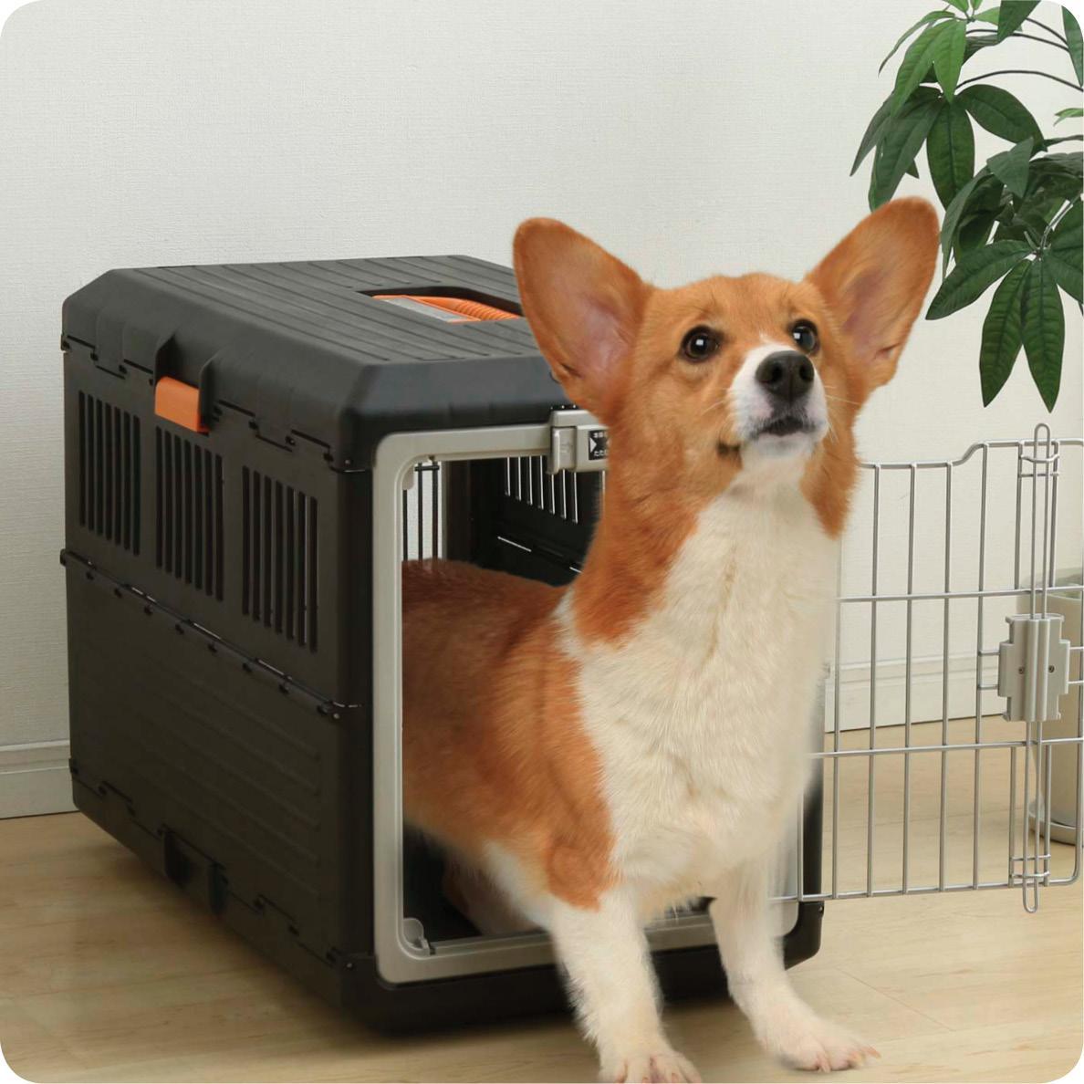 iris faltbare transportbox f r hunde und katzen fc 550. Black Bedroom Furniture Sets. Home Design Ideas