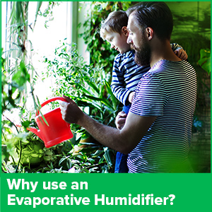 Why use an evaporative humidifier