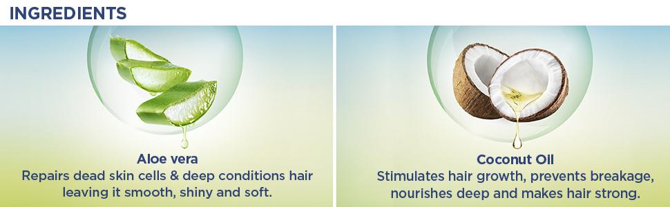 aloe vera parachute,coconut oil,aloe vera for hair,aloe vera women,women aloe vera,aloe for scalp