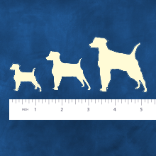 Chew bones designed for small, medium or large breed dogs. Illustration.