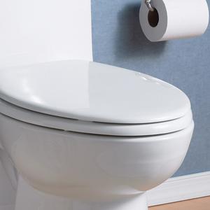 Sensational American Standard 5321A65Ct 021 Champion Slow Close Elongated Toilet Seat Bone Creativecarmelina Interior Chair Design Creativecarmelinacom