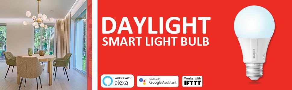 Smart Bulbs That Work with Alexa