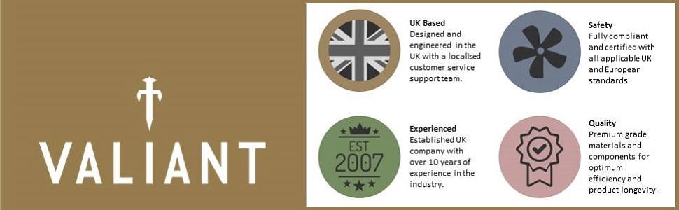 Valiant logo and company values