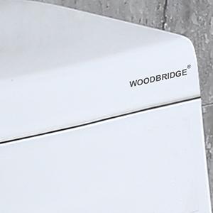 Woodbridge T 0019 Dual Flush Elongated One Piece Toilet