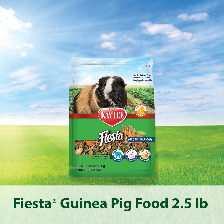 Kaytee Guinea Pig Food Review