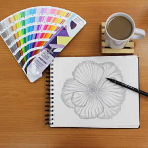 Creative, Design, Drawing, JVL