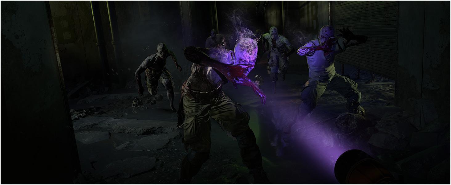 DL2 zombie