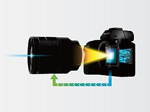 Systemkamera Testsieger von Sony