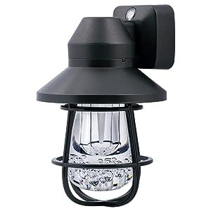 Black Cage Vintage LED Night Light