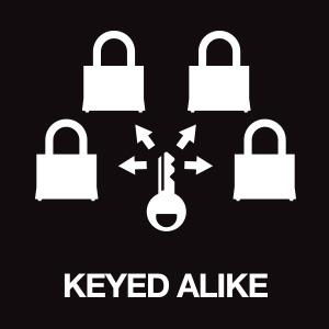 lock, padlock, padlock with key, outdoor lock, gate lock, lock with key, locks, padlocks
