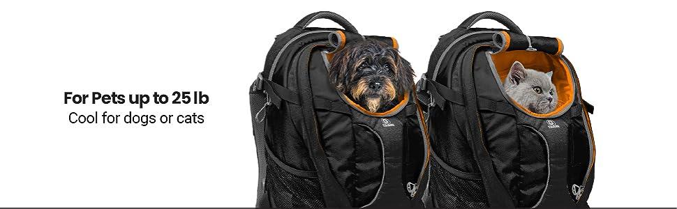dog backpack, cat backpack, pet carrier
