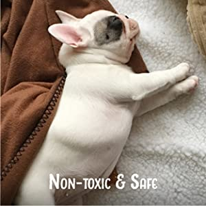 Honest Paws, Stain, Odor, Carpet, Remover, Natural, Non-toxic, Clean