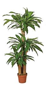 Planta Artificial Drácena