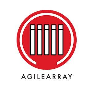 Optimisation AgileArray pour NAS
