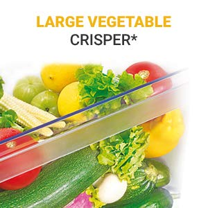 Large Vegetable Crisper