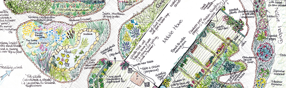 Aranya, permaculture design, sustainable, nature, gardens, communities, home