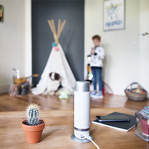 bosch smart home 360 innenkamera kompatibel f r echo show echo spot und fire tv variante. Black Bedroom Furniture Sets. Home Design Ideas