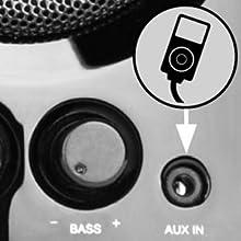 Entrada de línea altavoces Big Bass 95