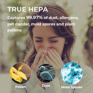 True HEPA Filter captures 99.97% of the allergies down to 0.3 microns like air-borne wildfire smoke