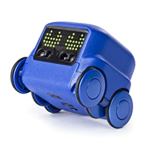 Boxer, robot, AI, STEM, STEAM, building