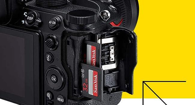 Dual SD Cards