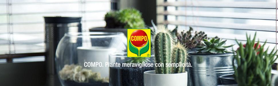 Compo concime liquido cactus piante grasse
