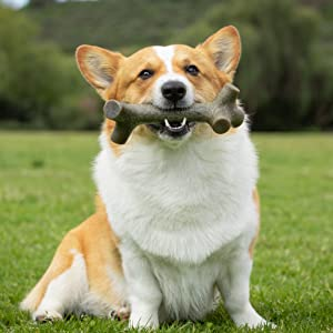 stick dog chew