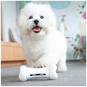 interactive dog toy automatic dog toy cat toy cat ball dog ball dog toys