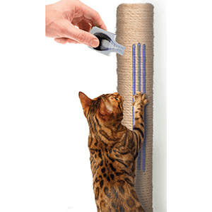 stop cat scratching, ceva, feliway, feliscratch, cat scratching, prevent cat scratching