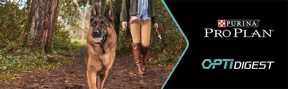 Digestion sensible du chien pro plan Optidigest croquettes