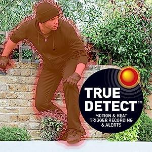 TrueDetect