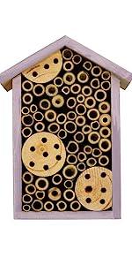 purple bee house