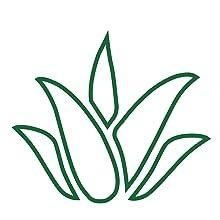 aloe vera herb emoji