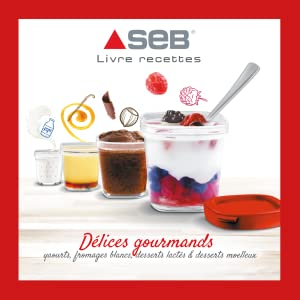 yaourtiere seb multidelices express YG661500 recettes