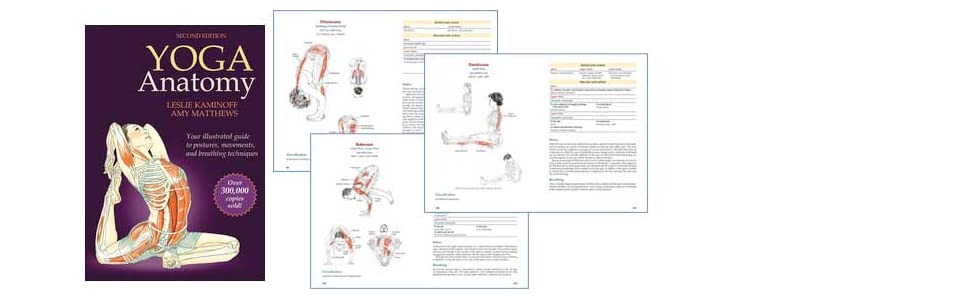 Yoga Anatomy by Leslie Kaminoff and Amy Matthews