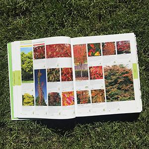 RHS Encyclopedia Of Plants and Flowers: Amazon.co.uk ...