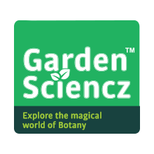 Science Game