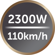 2300 watt