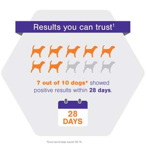 Results you can trust
