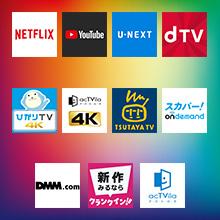 NETFLIX、YouTube、U-NEXT、dTV、ひかりTV 4K、acTVila 4K、TSUTAYA TV、スカパーon demand、クランクイン!ビデオ、DMM.com、acTVila