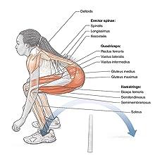 Plyometric Anatomy by Derek Hansen and Steve Kennelly